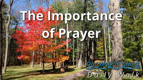 The Importance of Prayer | Daily Walk 1