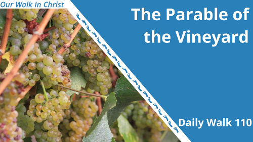 The Parable of the Vinyard | Daily Walk 110