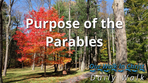 Purpose of the Parables | Daily Walk 12