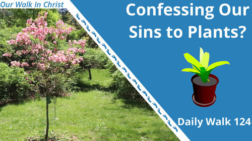 Confessing Our Sins to Plants? | Daily Walk 124