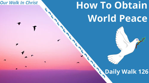How to Obtain World Peace | Daily Walk 126