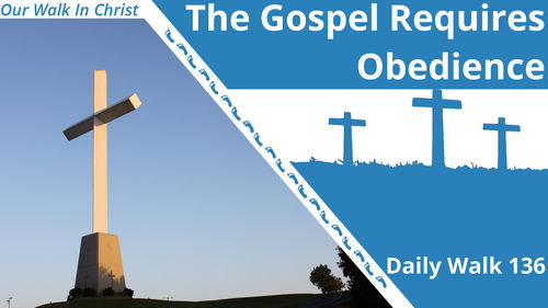 The Gospel Requires Obedience | Daily Walk 136