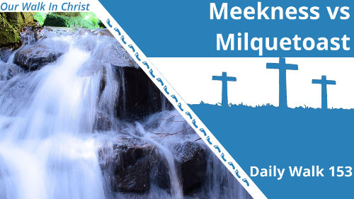 Meekness vs Milquetoast | Daily Walk 153