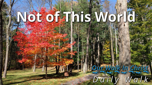 Not of This World | Daily Walk 16