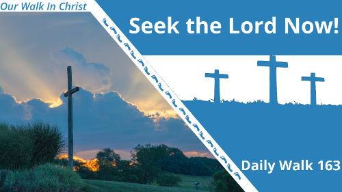 Seek the Lord Now | Daily Walk 163