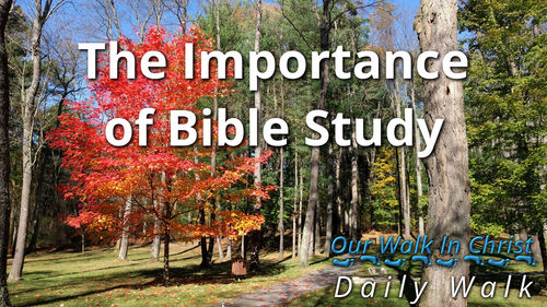 The Importance of Scripture Reading | Daily Walk 2