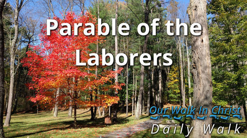 Parable of the Laborers | Daily Walk 20