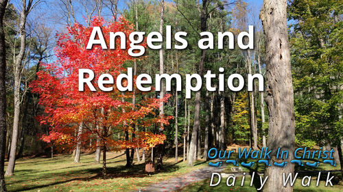 Angels and Redemption | Daily Walk 22