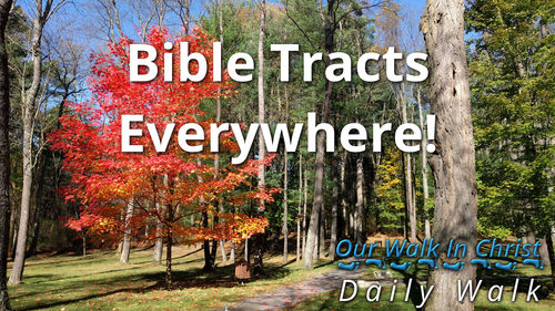 Bible Tracts Everywhere | Daily Walk 4