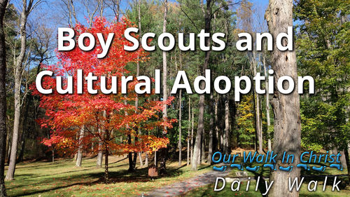 Boy Scouts and Adopting the Culture | Daily Walk 59