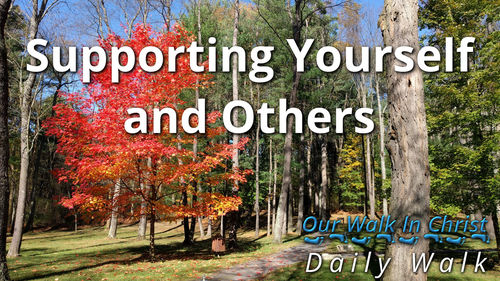 Support Yourself and Others | Daily Walk 63
