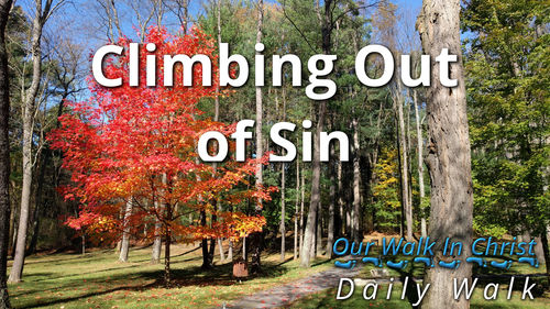 Climb Out of Sin | Daily Walk 67