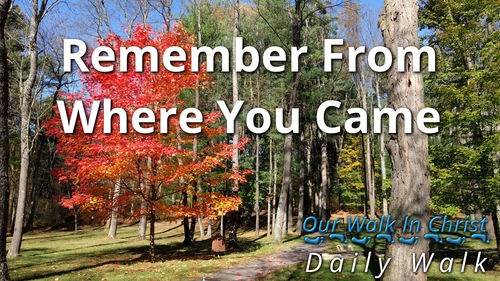 Remember From Where You Came | Daily Walk 68