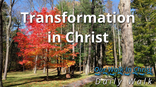 Transformation in Christ | Daily Walk 7