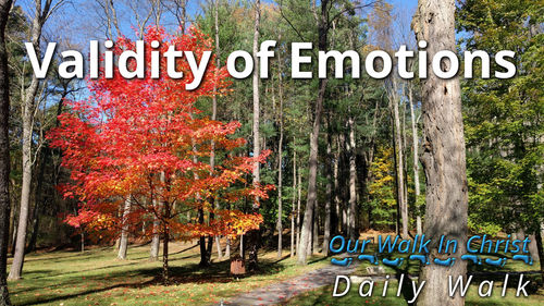 Validity of Emotions | Daily Walk 70