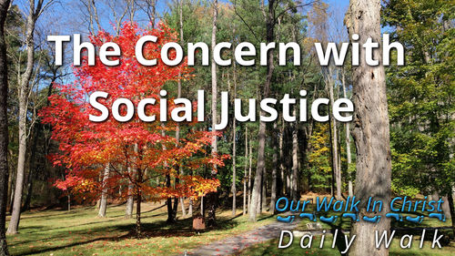 Concern with Social Justice | Daily Walk 71
