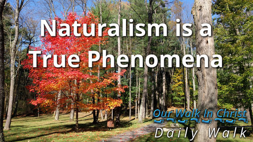 Naturalism Is Real | Daily Walk 73
