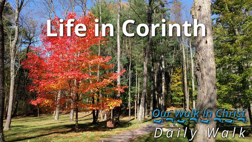 Life in Corinth | Daily Walk 8